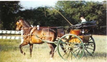cabriolet a cheval